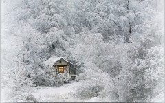 imagini_de_iarna_5
