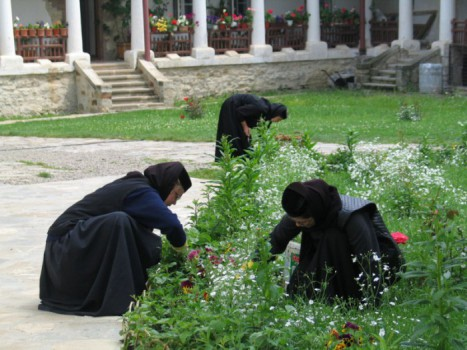 manastirea-agapia-curte-maici