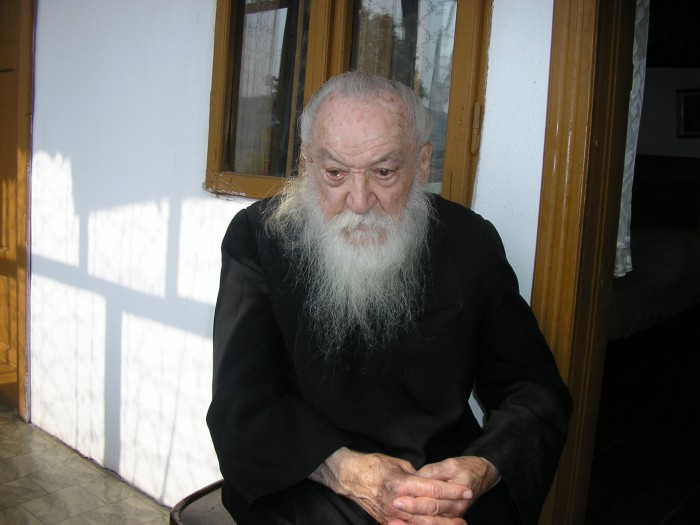 ADRIAN-FAGETEANU-SCHITUL-LOCURIRELE-2007