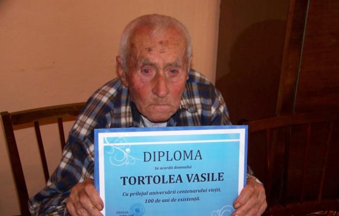 vasile_tortolea-1_w747_h373_q100
