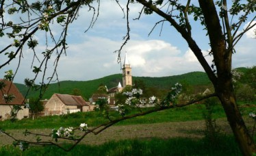 Primavara la Biserica saseasca din Amnas (Saliste)