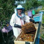 Vă recomandăm să procurați miere 100% naturală, de la un tânăr albinar